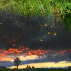 Tilted (Robyn Hooz) Tags: tilted upsidedown capovolto riflesso acqua canali cielo tramonto albero tree water reflection art artist view padova
