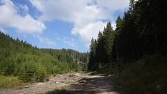 Pe valea Bâsca Mică sub Manișca Mare