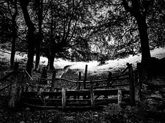 rnor80741.jpg (Robert Norbury) Tags: fuckit somearelandscapessomearenot icantbearsedkeywording fineartphotography blackandwhite photographer itdoesntmatterwhattheyarepicturesoftheyarejustpictures itdoesntmatterwhattheyarepicturesoftheyarejustpictur