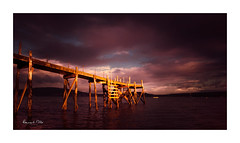 Warming My Bones (RonnieLMills 5 Million Views. Thank You All :)) Tags: wooden pier kinnegar jetty morning sun warm light belfast lough holywood county down northern ireland warming bones ronnielmills
