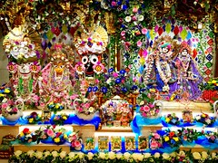 Today is Janmashtami - The Advent of Lord Krsna...... (Jason Khoo Photography) Tags: festivity festive festival srilaacbhaktivedantaswamiprabhupada tulasi govardhan giriraja nitai gaura subhadra baladev jagannātha radharani radha piety devotion worship butterthief makhanchora kanhaiya perspective ornate decoration radhakrishna radhalondonisvara radhakrsna gaudiyavaishanavaism gaudiya unlimitedphotos flickr photo pic life culture socialdocumentary explore capture dof stillimage london altar deties esoteric flowers decor colour color harekrishna harekrsna krsna lordkrishna lordkrsna spirituality photography iphone365 iphoneshotz iphoneshots iphone6 iphone krishna janmashtami