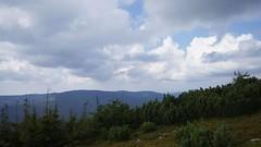 Vedere spre Lăcăuți de pe Goru