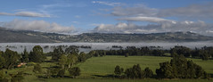 Niebla (rochavesl) Tags: paisaje bosque arboles colombia campo