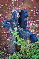 el eterno abrazo (Juan Ig. Llana) Tags: americadelnorte méxico chiapas sanjuanchamula cementerio tumbas cruces madera tierra chapas tapones refrescos cocacola pepsi hierba