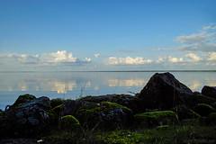 Some green & September blue (Joni Mansikka) Tags: nature outdoor lake stones blue sky clouds reflection green moss landscape view pyhäjärvi pöytyä suomi finland tokinaaf2880mmf28 atx280afpro