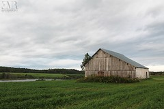 Grange, Lac-St-Jean, QC (Eve-Marie Roy) Tags: evemarieroy costard ferme farm grange barn cabane shack bâtiment building village rurale rural campagne country countryside old quebec canada lacstjean