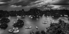 Halong Bay (Vietnam. Gustavo Thomas © 2018) (Gustavo Thomas) Tags: halongbay seascape waterscape titopisland vietnam asia landscape voyage voyager travel traveller trip mono monochrome blackandwhite bnw