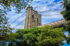 Abridged (Anthony P.26) Tags: architecture brooklyn brooklynbridge category newyork places travel usa tree sky building bridge tower lines frame bluesky canon550d canon1585mm canon travelphotography structure architecturephotography