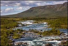 Vuojatädno (Jonas Thomén) Tags: jokk river å lapland lappland stora sjöfallet fjäll fell water vatten stream fors rapids skog forest padjelantaleden