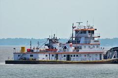 MV Eric Haney-TVT_1962 (2) (Porch Dog) Tags: 2018 garywhittington kentucky nikond7000 nikkor200500mm september fall towboats paducahkentucky footofbroadway barges ohioriver