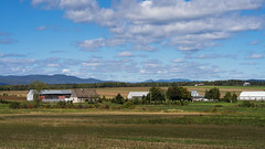 Orleans Island, Quebec, Canada (Agirard) Tags: orleans island quebec canada field farm landscape grass sky old house mountains laurentides sony a7ii canon 85mm 1885mm vintage lens