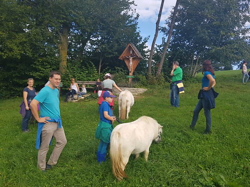 Ponywanderung im Spätsommer