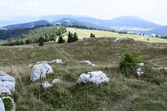 _DSC0334 Chasseron, Vaud, Suisse (Marie-Annick Vigne. + 1'000'000. Merci. Thanks) Tags: randonnée rando suisse vaud jura stecroix bullet chasseron