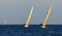 Donna ja Raita II maalisuoralla (Antti Tassberg) Tags: purjehdus donna raitaii vene regatta pirita htr boat helsinki race sailing tallinna harjumaakond viro ee