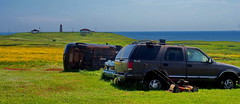 Is Entry Island In An Earthquake Zone? (nelhiebelv) Tags: used dead cars entry island quebec lighthouse