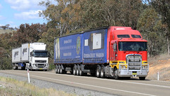 Lachlan Valley LINX (2/2) (Jungle Jack Movements (ferroequinologist)) Tags: nsw new south wales lachlan valley way hume highway patrick linx cargo group riverina estate wine kenworth cabover hp horsepower big rig haul haulage freight trucker drive transport carry delivery bulk lorry hgv wagon road nose semi trailer deliver interstate articulated vehicle load freighter ship move roll motor engine power teamster truck tractor prime mover diesel injected driver cab cabin loud rumble beast wheel exhaust double b grunt bowning k200