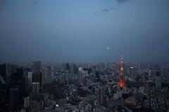 tokyo-days-37 (kchantraine) Tags: artgallery japan katieredburn roppongi tokyo tokyodaysalbum vacation view minato jp