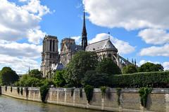 View from Pont de l'Archevêché (laurenspies) Tags: notredame paris îledefrance france europe seineriver fr seine pontdelarchevêché notredamedeparis cathedral gothic architecture river îledelacité