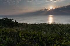Marconi Beach (jkc916) Tags: marconibeach wellfleetcapecod sunrise jkc916 jordanconfinophotography jordanconfino elevatedphotoprocom capecod massachusetts nikon