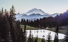 Rainier (ashpmk) Tags: rain mtrainier mountain mountains mountainsofus mountrainier usmountains pnw nw pacificnorthwest pacific northwest washington washingtonstate landscape lake laketipsoo tipsoo