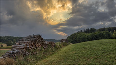 Bei Sonnenaufgang (Robbi Metz) Tags: deutschland germany bayern bavaria reischenau augsburgwestlichewälder landscape forest sunrise sky clouds wood colors canoneos