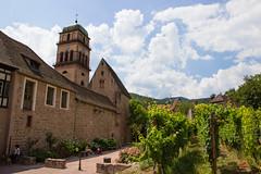Au pied des vignes (StephanExposE) Tags: kaysersberg alsace france stephanexpose village city vignoble vigne wine canon 600d 1635mm 1635mmf28liiusm nature