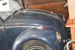 05282011-49 (ReesKlintworth) Tags: 1967 beetle bug carvehicle volkswagen volkswagenbeetle