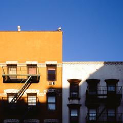 Urban shadows 11: blue, white, and yellow in LES (NYC Macroscopist) Tags: building exterior shadows shadowsandlight shadowplay shadowhunters minimalism urban abstract urbanabstract urbanminimalism colors colorpop colorcontrast manhattan newyork nyc