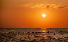MAR DE ALBORÁN - ALBORAN SEA (TONY-BUENO - Barcelona) Tags: canon sea sun ocean eos 35350 35350ef3556 5d 5dmkii 5dmk2 almeria amanecer sunrise nature naturaleza pajaros