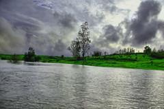 Vaitarna river (Debmalya Mukherjee) Tags: debmalyamukherjee canon550d 18135 maharastra green river hdr monsoon vitarna
