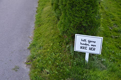 Feel free to walk the dog, but NOT HERE. (-Kj.) Tags: nordfjordeid nordfjord sign lawn