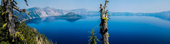 Crater Lake / Oregon (Udo S) Tags: lake mountains syk water trees nationalpark craterlake usa amerika vacationsurlaub farben blau spiegelung reflections landscape vulkan volcano slope moos moss grün green colors oregon