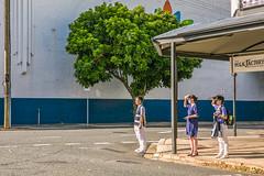 Sentinels (trebandicoot (Lynn)) Tags: cityscape street milkfactory australia people sentinels southbrisbane milkfactorybar candid tree industrial streetscape streetphotography urban vertical wall building line aligned