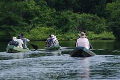 Amazon Cruise (tim ellis) Tags: holiday amazon iracema rionegro jauriver manaus brazil