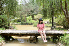 _DSC6401 (Quyr) Tags: dalat vietnam green smoke frog cloud tree forest langbiang lamdong portrait thunglungvang duonghamdatset