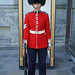 DSC01915 - Ceremonial Guard