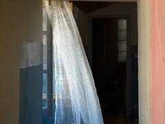 Brise-légère (RS...) Tags: intérieur rideau brise breeze curtain d800