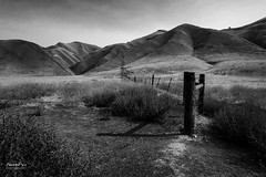 Fence Line (NormFox) Tags: bw bnw blackandwhite blackandwhiteartistry bushes california canong9x farm fence field grass hills landscape monochrome outdoors post ranch range rural sky