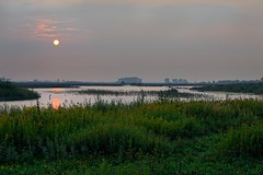Sunset, Tiengemeten (Photodoos) Tags: tiengemeten landscape hoeksche waard sunset wetlands netherlands canonnl 24105 6d