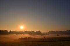 Sunrise (Bo Dudas) Tags: sunrise sunset sun sky fieal woods forest mist fog prairie sunrays panorama morning nature outdoors