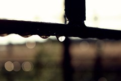 Kropelka (sercezczekolady) Tags: deszcz kroplawody krople nikon sun summer art woda aqua water drops artistic rain polska photography photographyoftheday nothing nic pięknapolska