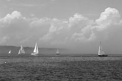 Pre-Race (JBAdams) Tags: merriconeagyachtingassociation mya sail sailing sailboat yacht yachting regatta sea seascape coast maine harpswell water clouds cloudsstormssunsetssunrises bw bwfp film analog availablelight ambientlight sky manualfocus nikon nikonf2 zeiss zeisszf85f14planar planart1485 rolleiretro80s blackandwhite marine nikonf2a 35mmfilm boat