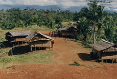 Muyu-Mandobo-015b (Stichting Papua Erfgoed) Tags: pietvanmensvoort papuaheritagefoundation stichtingpapuaerfgoed papua irianjaya voormalignederlandsnieuwguinea