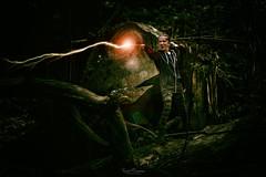 Stupefy! (Kurt Evensen) Tags: fantasy stupify magic kid battle photoshop theforbiddenforest spell defenseagainstthedarkarts harrypotter jinx forest lightning fight witch mystic photovision gryffindor wand