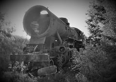Steamtrain graveyard 3 (roomman) Tags: steam engine dampflok black colour old history historic class baureihe unknown graveyard scrap scrapyard number grey rust front bw white contrast monochrome blackandwhite bandw scale