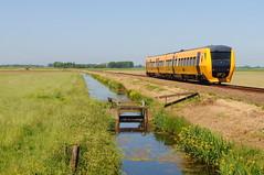 NS-R 3439 Buffel (peter.velthoen) Tags: buffel ns dieseltrein laatstensontwerp zwollekampen spoorlijn diesellijn polder zomerdag sloot bloemen ns3439