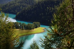 Secret island (annazelei) Tags: forest landscape water tree mountain wood serene scenery blue blau türkiz pine swiss switzerland schweiz turquoise summer national nature natural naturphotography lake trees larch europe naturephoto