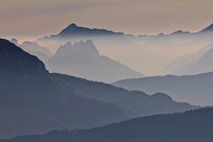 Old summer (Redederfla) Tags: dunst fog