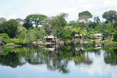 Amazon Village (tim ellis) Tags: holiday amazon iracema rionegro jauriver village manaus brazil