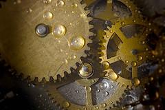 Tic-tock drip-drop (Barrie T) Tags: macromonday cogwheel macro waterdrops